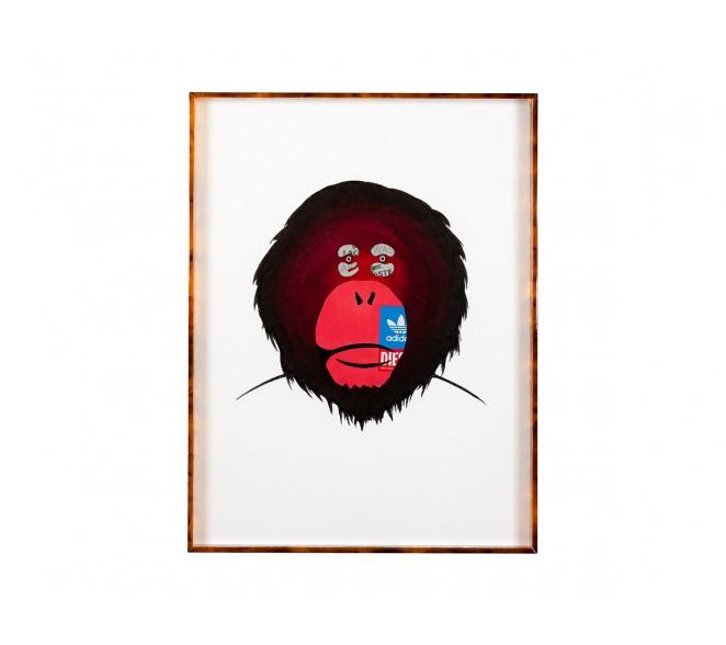 Adidas - Monkey Brands