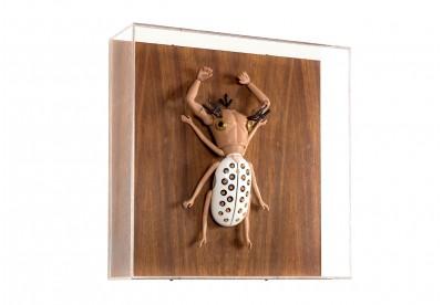 Escultura Sang Won Sung - Inseto Falcon