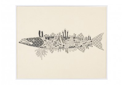 Peixe Barracuda