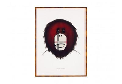 Burberry - Monkey Brand