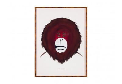 Chloé - Monkeys Brands