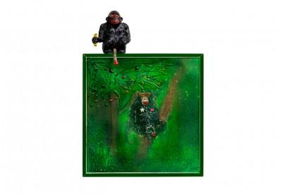 Monkey Nude 01