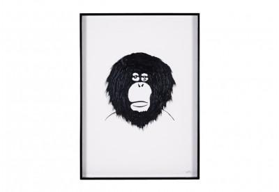 Monkey Black