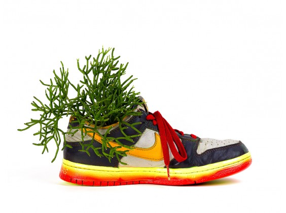 Vaso Sneaker II