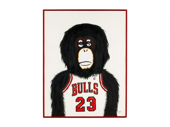 Monkey NBA - Chicago Bulls