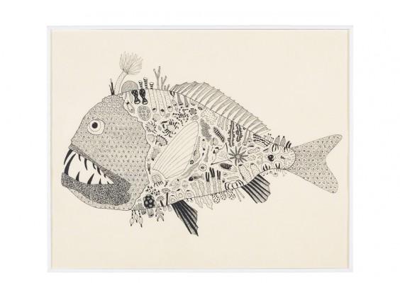 Peixe Ogro